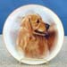 "714-093 - Golden Retriever 8"" Plate"