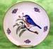 """714-110BB - Bluebird 8"""" Plate"""